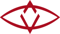 SingularDTV (SNGLS) Logo
