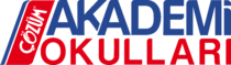 Çözüm Akademi Okulları Logo
