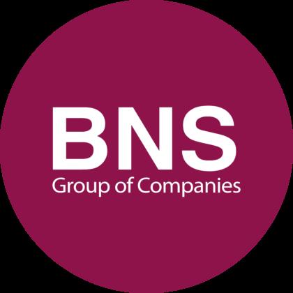 BNS Group Logo