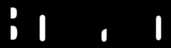 Borland Logo