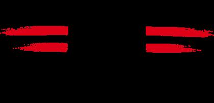 Erste Donau Dampfschiffahrts Gesellschaft Logo