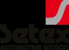 Setex Logo