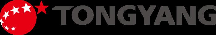 Tong Yang Group Logo