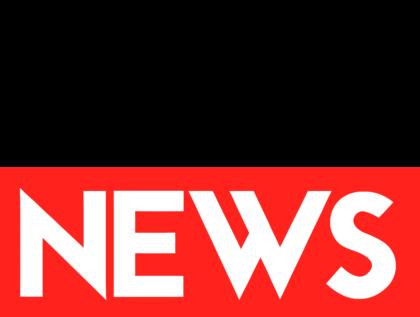ANF News Logo