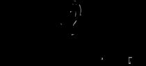 Dailus Color Logo