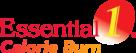 Essential 1 Logo