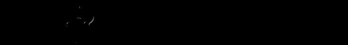 Il Mattino Logo