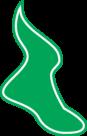 Montreal Shamrocks Logo