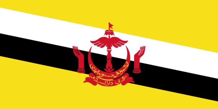 Flag of Brunei