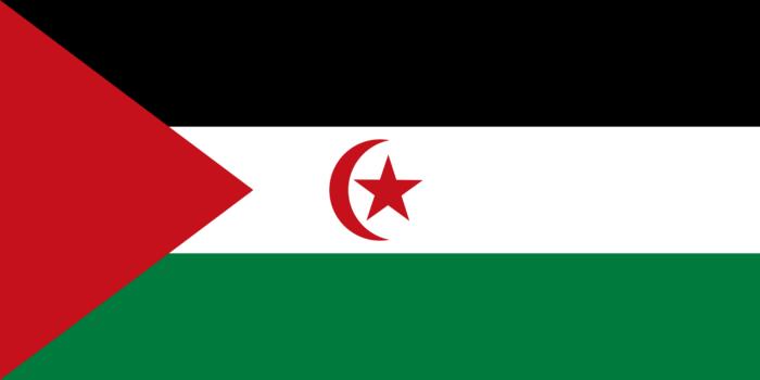 Flag of the Sahrawi Arab Democratic Republic